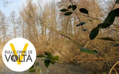 """22 aprile """"Dalla torbiera al gas metano: Volta e l'Oasi del Bassone"""""""