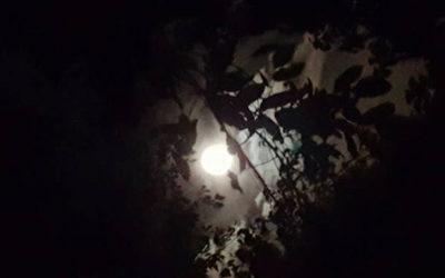 """5 settembre """"Alla luna. Passeggiata notturna tra poesia e scienza"""""""