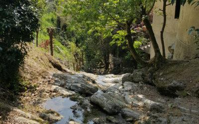 """8 ottobre """"Una vena d'acqua nel cuore di Como. Risalendo il Valduce"""""""
