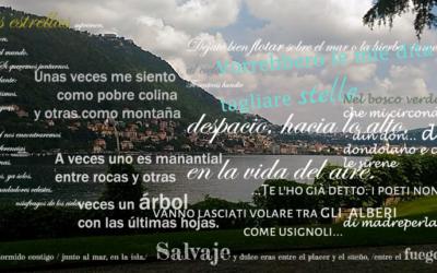 """3 settembre """"Poemas en el parque"""""""